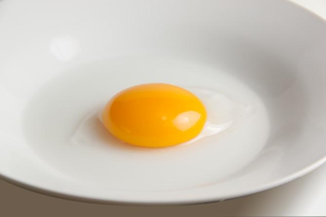 raw duck egg yolk